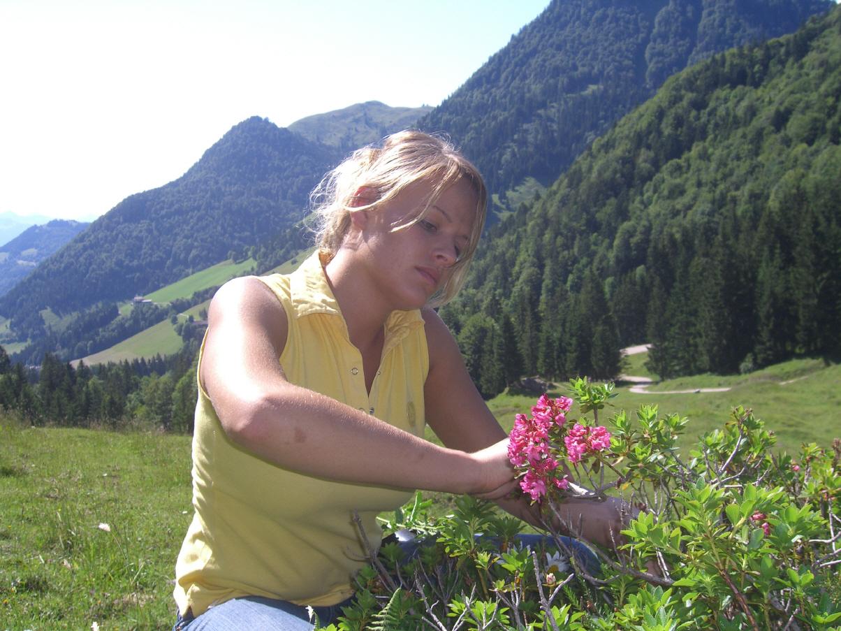 Klettersteig Ottenalm : Ottenalm